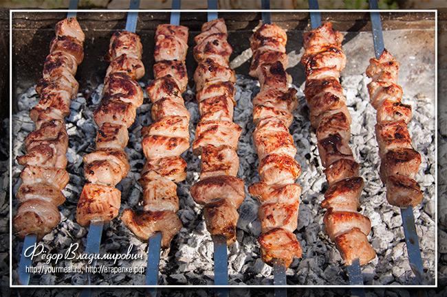 Шашлык из мяса индейки
