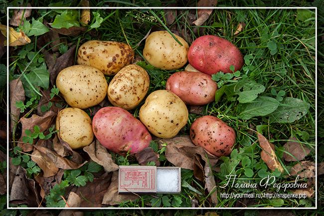 Печеная в углях картошка